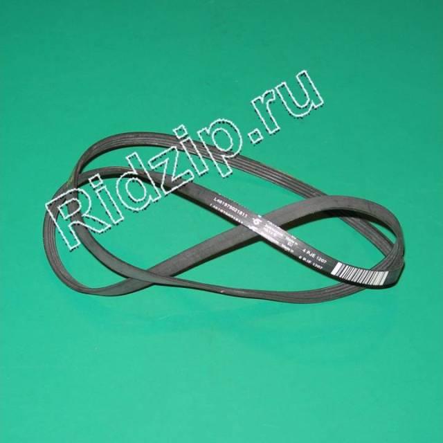 481235818204 - Ремень приводной 1207 J4 к стиральным машинам Whirlpool, Bauknecht, IKEA (Вирпул, Баукнехт, ИКЕА)