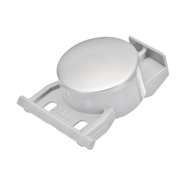 BS 424673 - Кнопка (клавиша) к посудомоечным машинам Bosch, Siemens, Neff, Gaggenau (Бош, Сименс, Гагенау, Нефф)